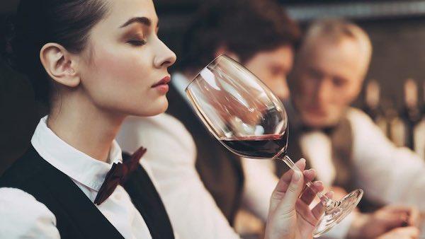 Choose-the-Best-Wine-Cooler